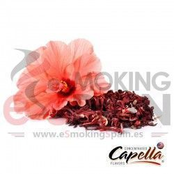 Hibiscus Capella 10ml