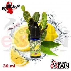 Lemon & Cactus (Retro Juice) Big Mouth 30ml Aroma